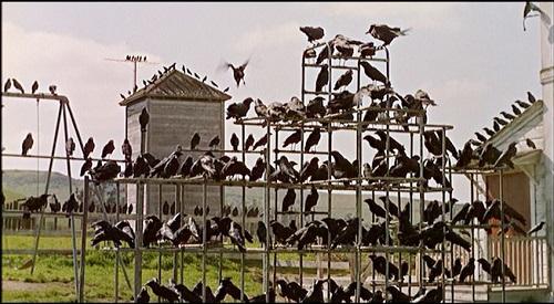 1963_The Birds01